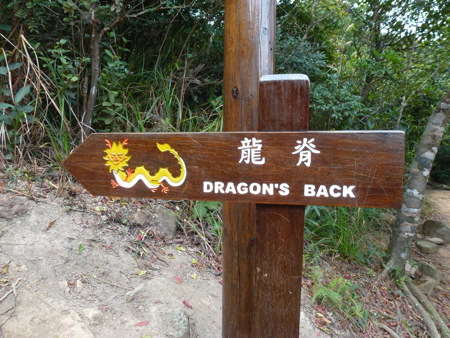 Dragons' Back